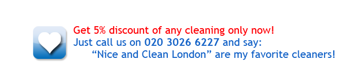 Christmas special offers: Get 5% discount of any cleaning only now!